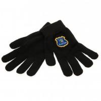 Everton F.C. vaikiškos žieminės pirštinės
