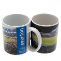 Everton F.C. puodelis (Stadiono panorama)