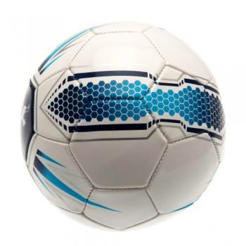 Tottenham Hotspur F.C. futbolo kamuolys (Baltas)