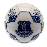 Everton F.C. treniruočių mini kamuolys