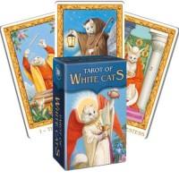 Taro Kortos Mini Tarot Of White Cats
