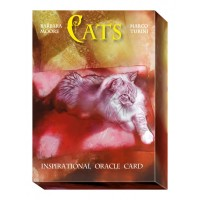 Oracle Kortos Cats Inspirational
