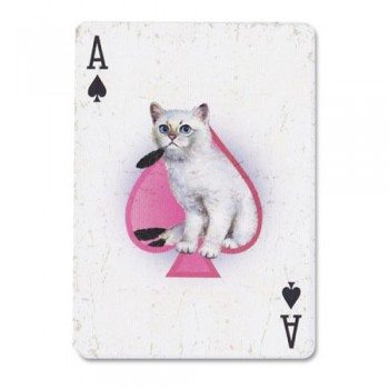 Ellusionist Madison Kittens Bicycle kortos