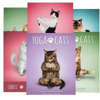 Yoga Cats Challenges kortos