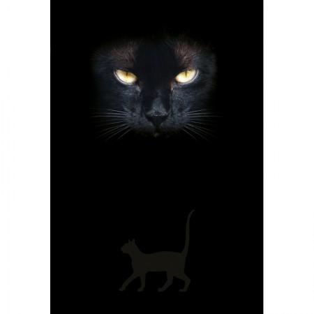 Užrašinė Cats Eyes