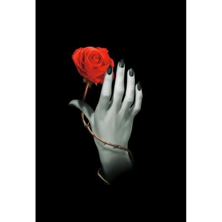 Užrašinė Rose Hand