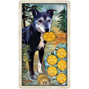 Wise Dog Taro kortos