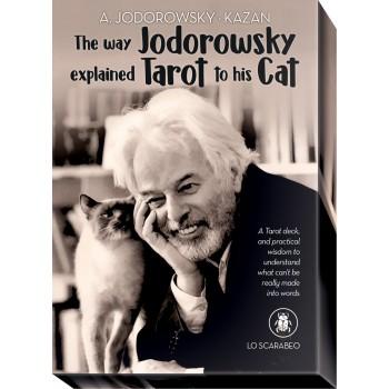 The Way Jodorowsky Explained Tarot To His Cat Kortos